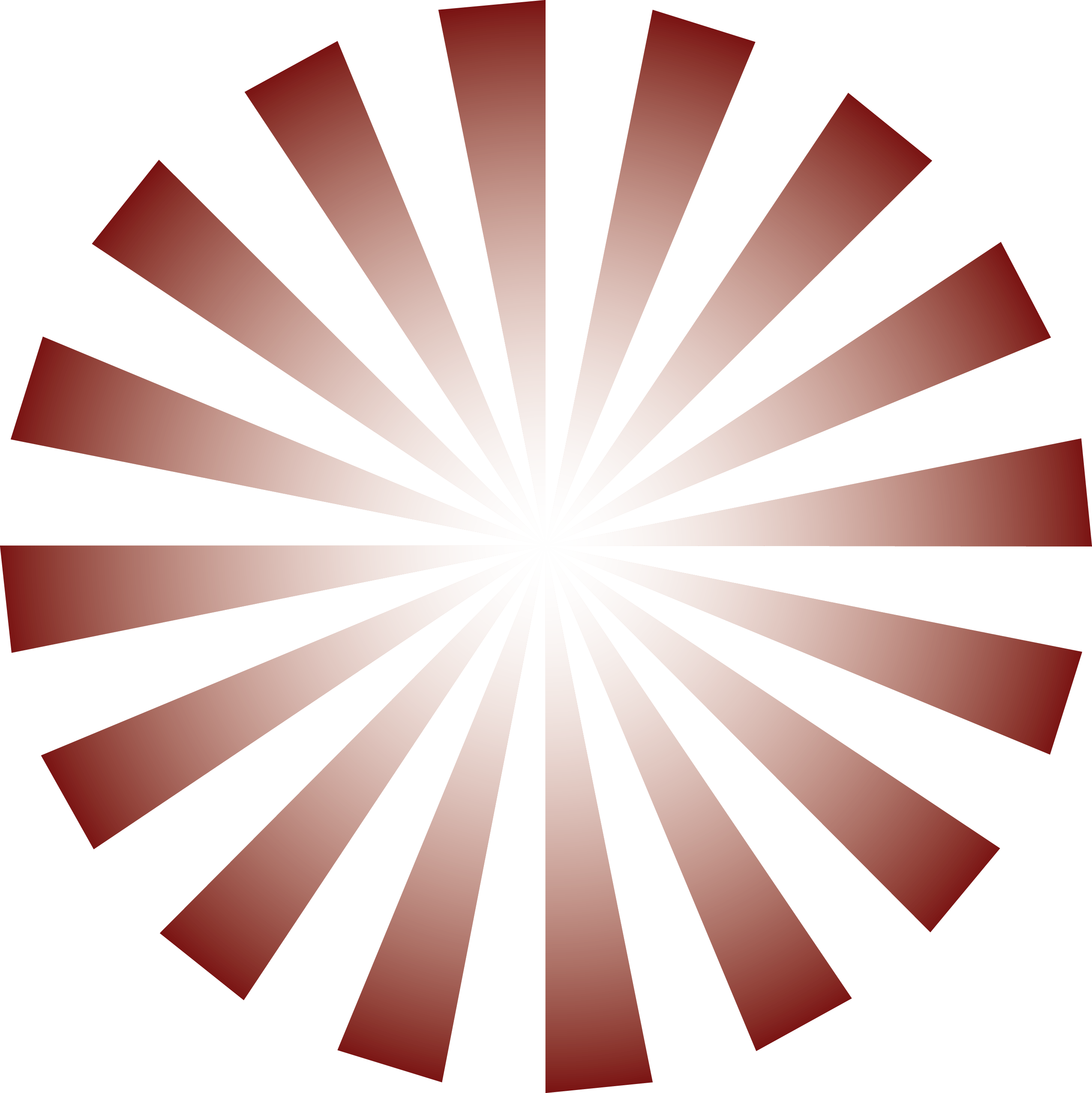 ray design