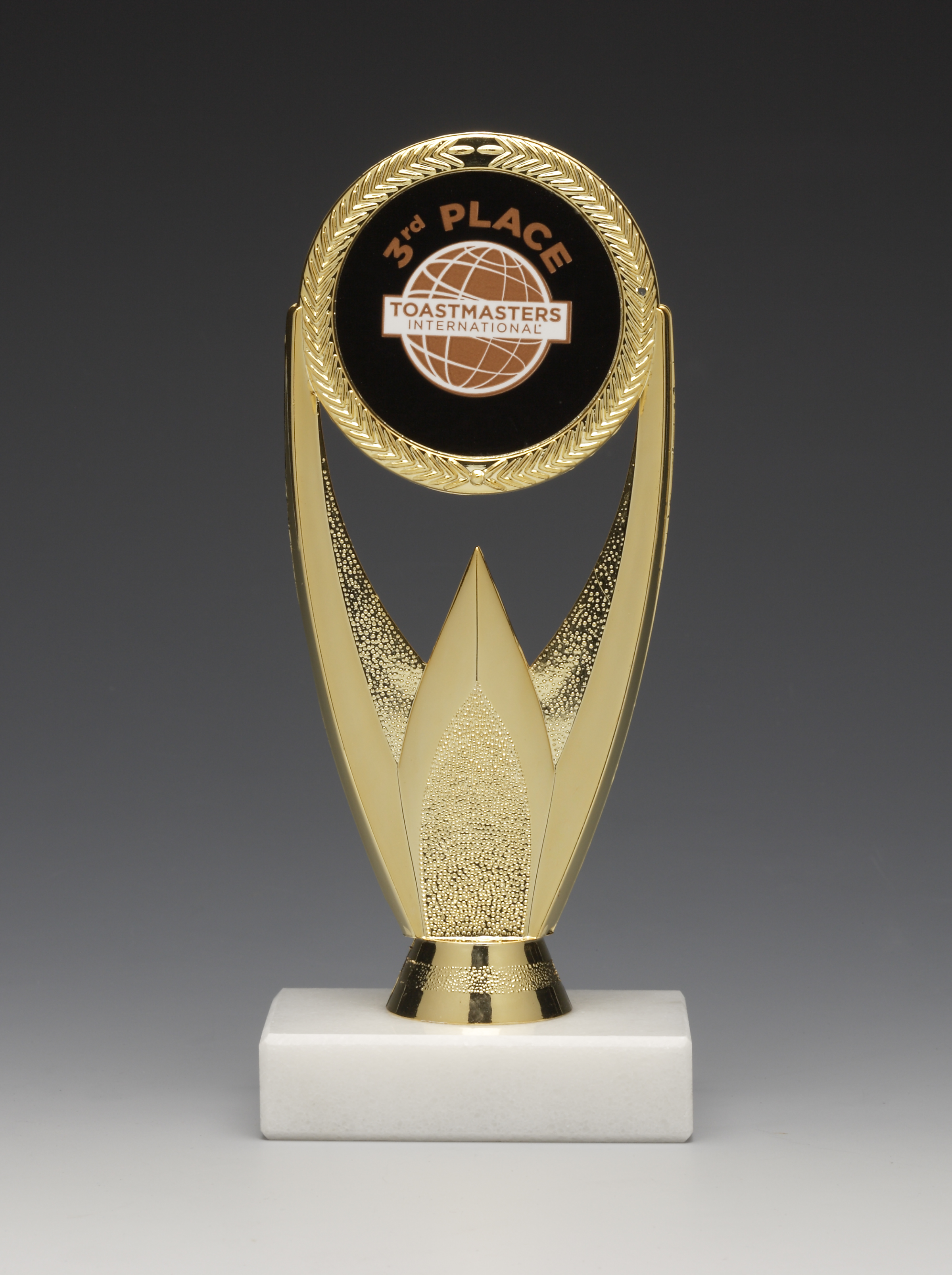 Oval Torch Award (3rd Place)