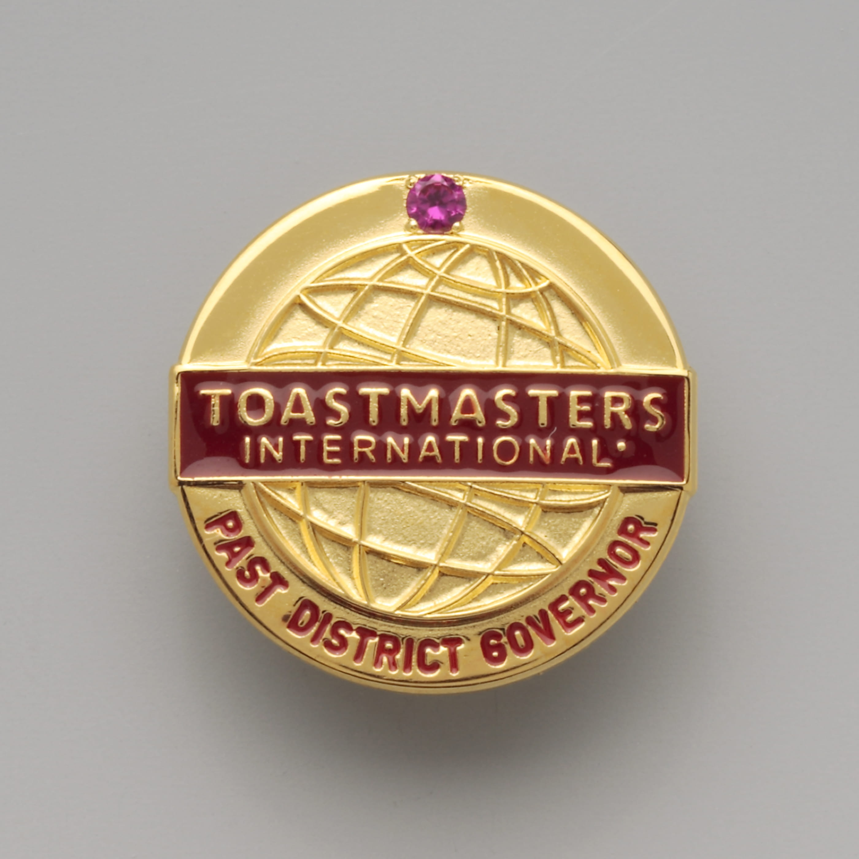Past District Governor Pin (with stone)