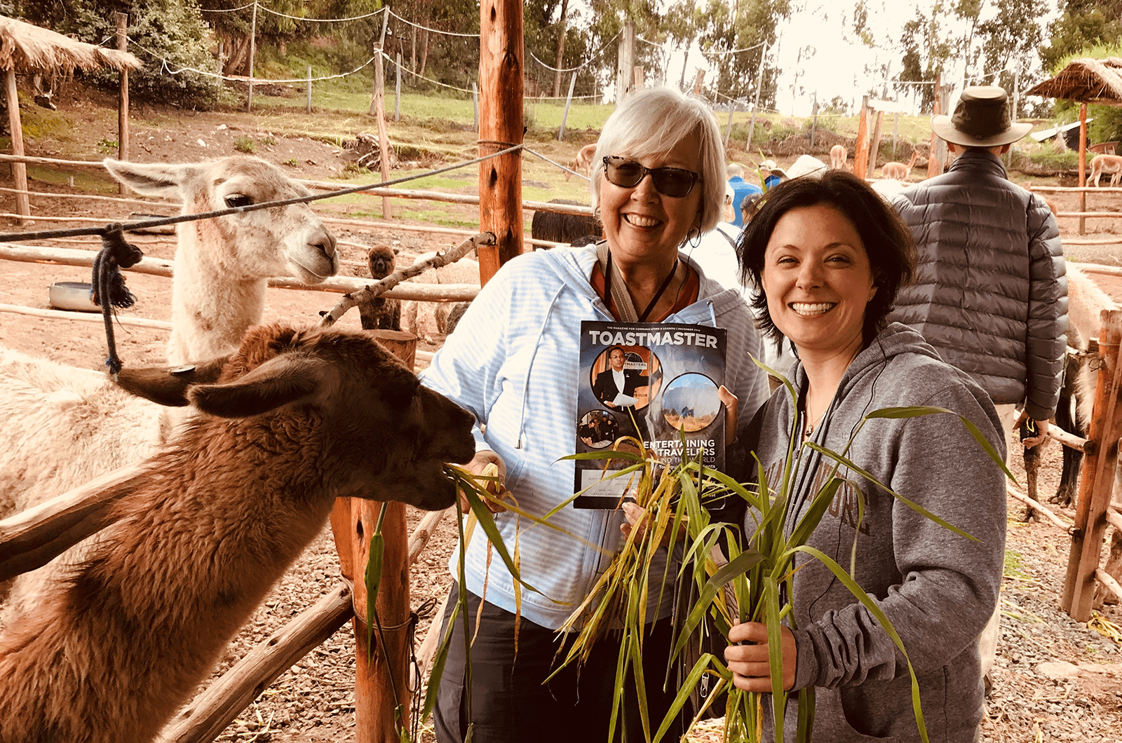 Jennifer Czapla of Amherst, New York, and her aunt Gail Marsh, DTM, of Gambrills, Maryland, feed alpacas in Cusco, Peru.